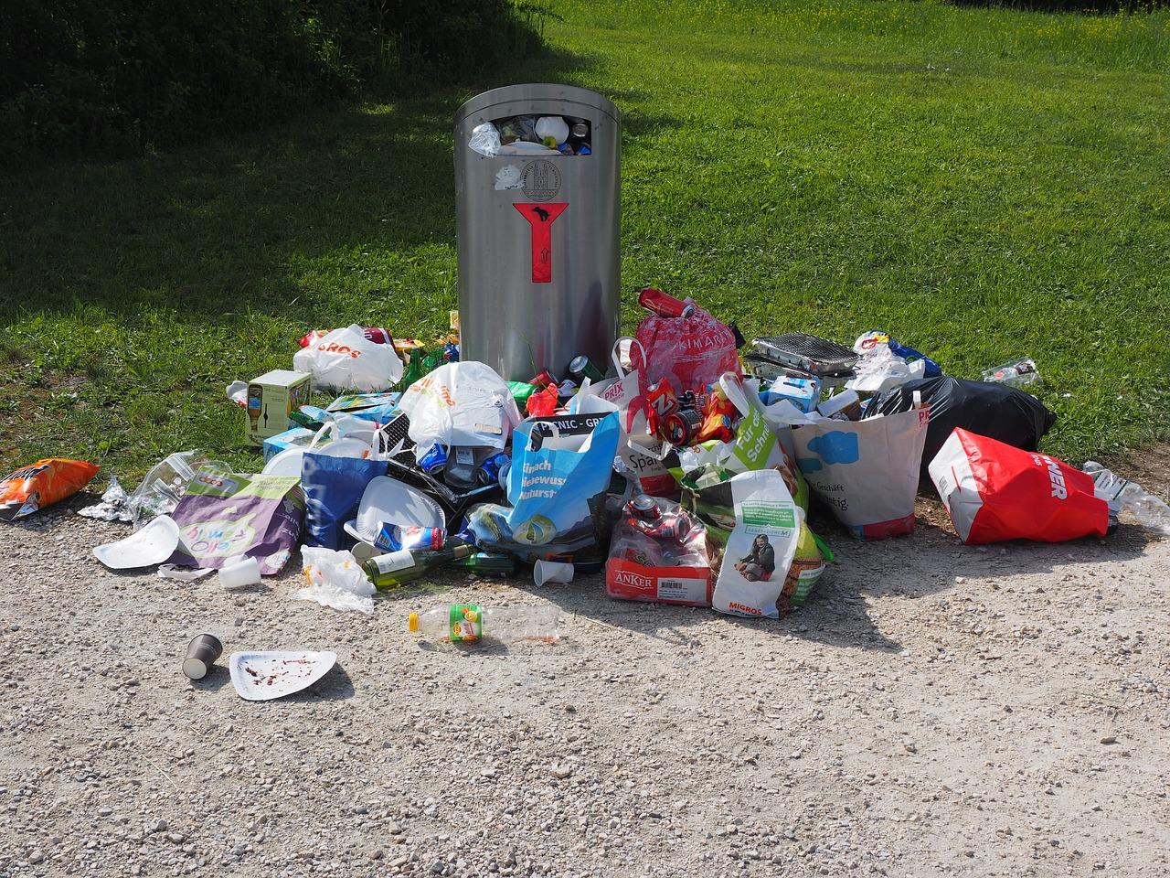 sprzątanie świata Warszawa